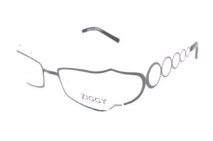 ZIGGY OPTIQUE 10/10 FACHES THUMESNIL
